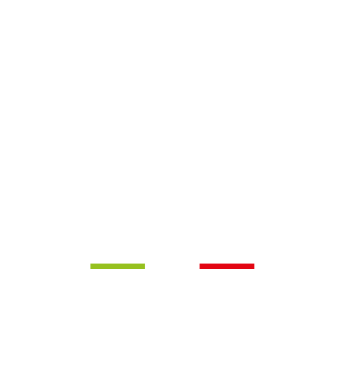 Gemini: go to the store online!